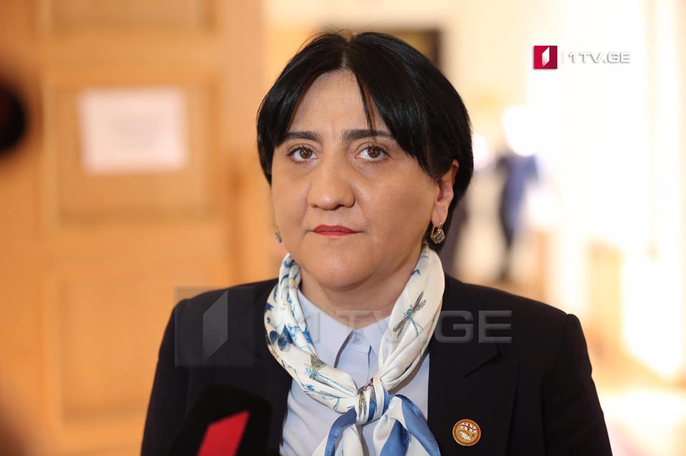 Ирма Инашвили – Пусть назначат меня Главным прокурором на неделю и я обещаю грузинскому народу, что задержу Саакашвили