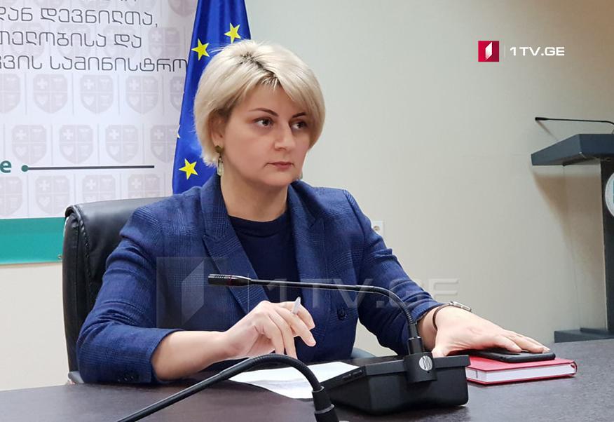 საქართველოში მცხოვრები შშმ მოქალაქეები საკუთარი უფლებების აღდგენას საერთაშორისო დონეზეც შეძლებენ