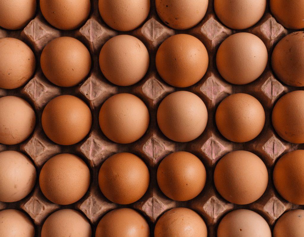საქართველოში ხორცის, რძისა და კვერცხის წარმოება გაიზარდა