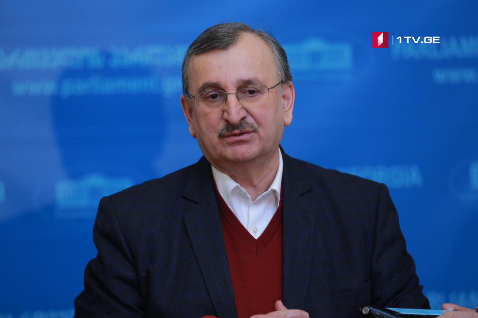 Роман Гоциридзе – Вопрос создания временной следственной комиссии по делу Темирлана Мачаликашвили будет рассматриваться на этой неделе