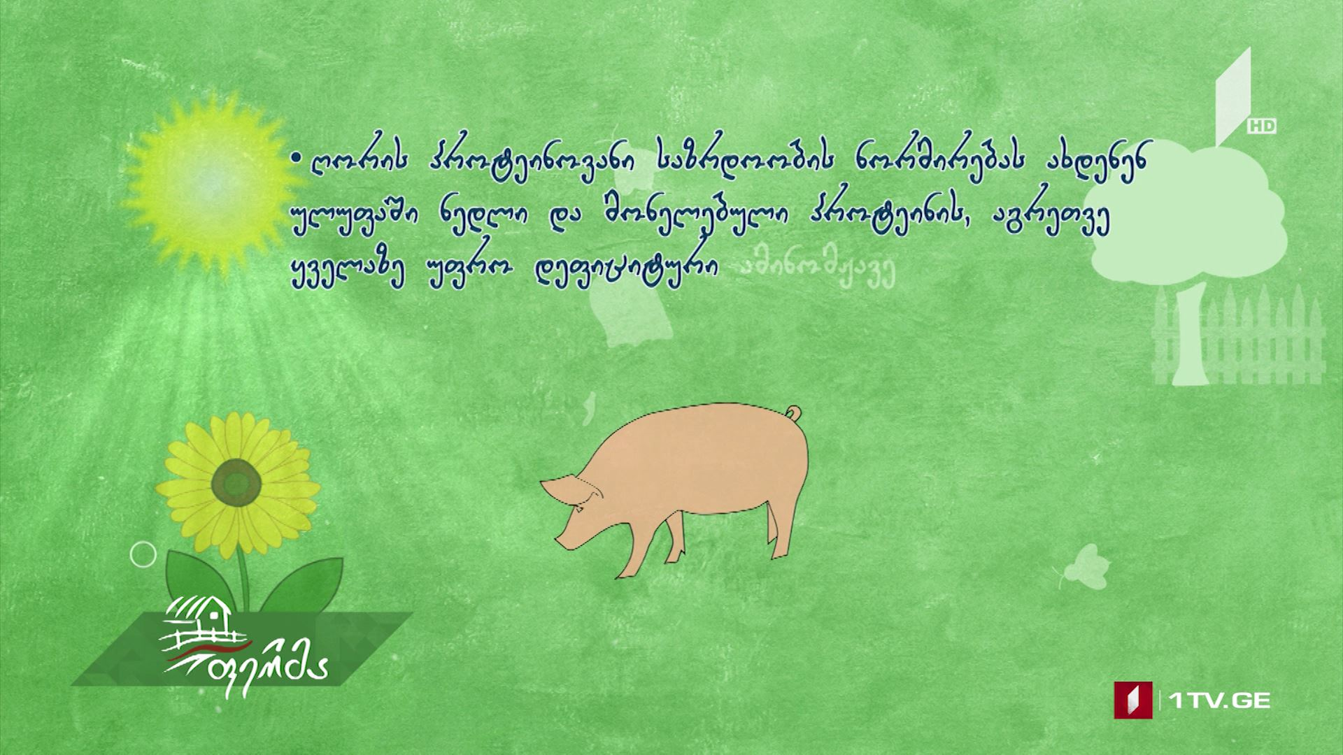 #უკეთრომაკეთო ღორის და გოჭების კვება