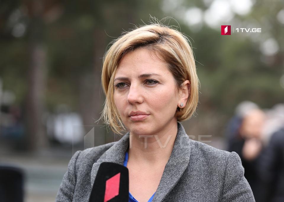 Анна Долидзе обращается к правительству с инициативой объявить Давид-Гареджи охраняемой территорией