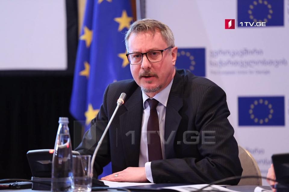 Карл Харцель - Важно, чтобы Россия передала грузинским властям все доказательства об обстоятельствах смерти Ираклия Кварацелия