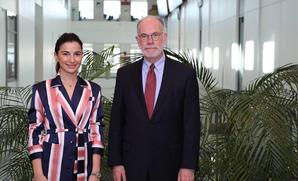 Росс Уилсон и Мариам Квривишвили обсудили перспективы назначения прямых рейсов между США и Грузией