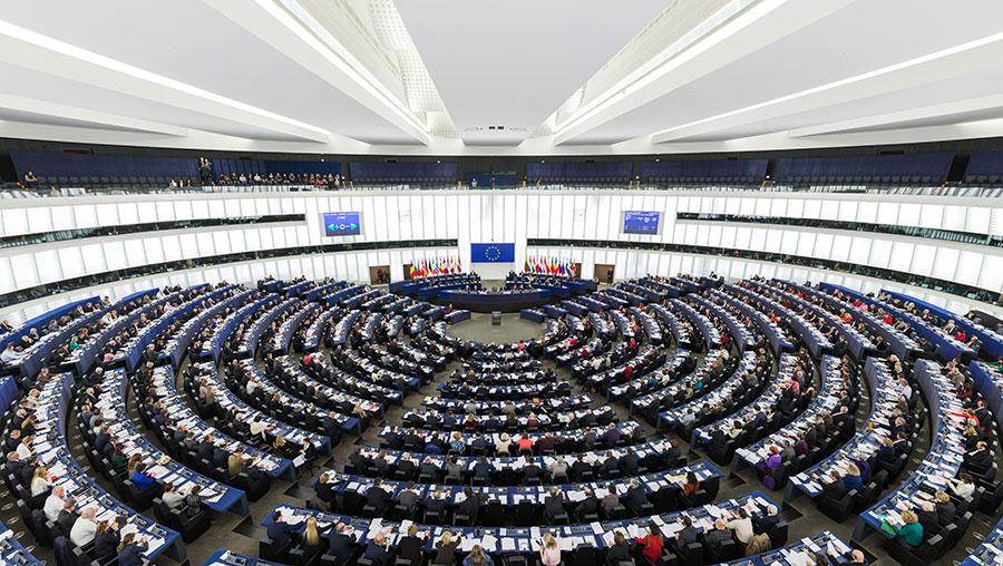 """პროგნოზის მიხედვით, """"ევროპის სახალხო პარტია"""", სოციალისტებისა და დემოკრატების ჯგუფი ევროპარლამენტში 73 ადგილს დაკარგავენ"""