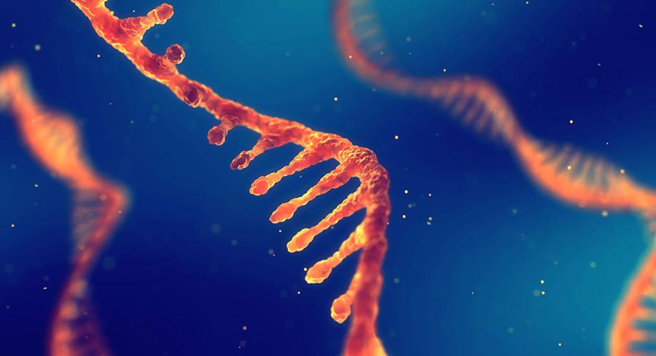 დნმ და რნმ დედამიწაზე შესაძლოა, ერთდროულად გამოჩნდა - როგორი იყო სიცოცხლის საწყისები ჩვენს პლანეტაზე