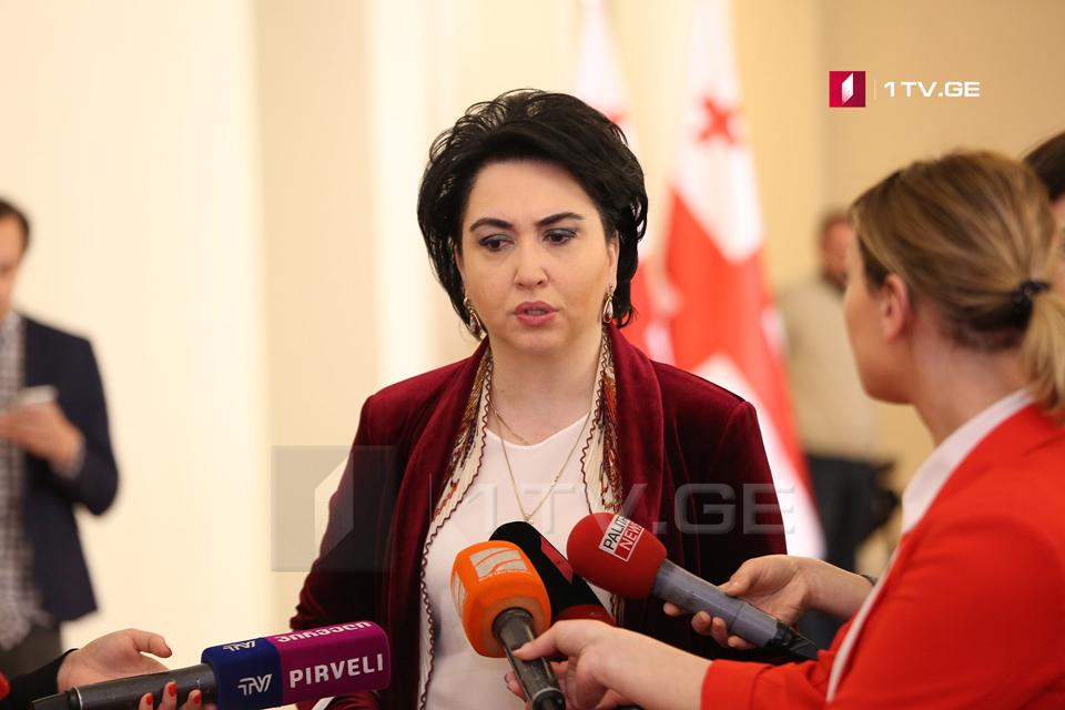 Эка Беселия зарегистрировала проект поправок к конституции