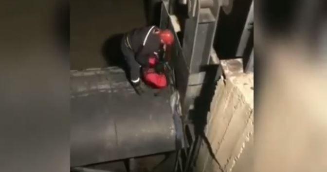 В Кутаиси пожарные-спасатели пришли на помощь собаке застрявшей под мостом (видео)