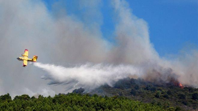 В Италии двух студентов оштрафовали на 13 миллионов евро из-за лесного пожара