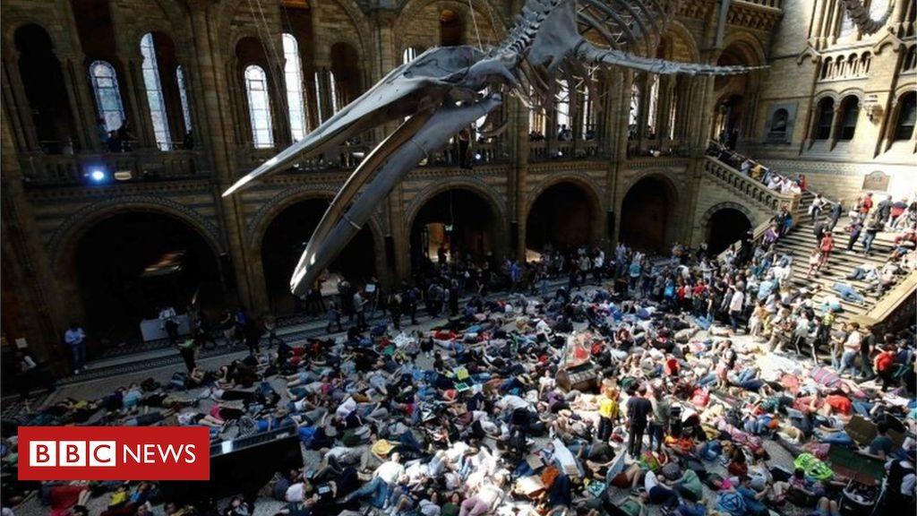 """მოძრაობის """"ამბოხება გადაშენების წინააღმდეგ"""" აქტივისტებმა ლონდონის ბუნების ისტორიის მუზეუმის ნაწილი დაიკავეს"""