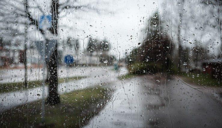 В ближайшие дни в Грузии ожидается дождливая погода
