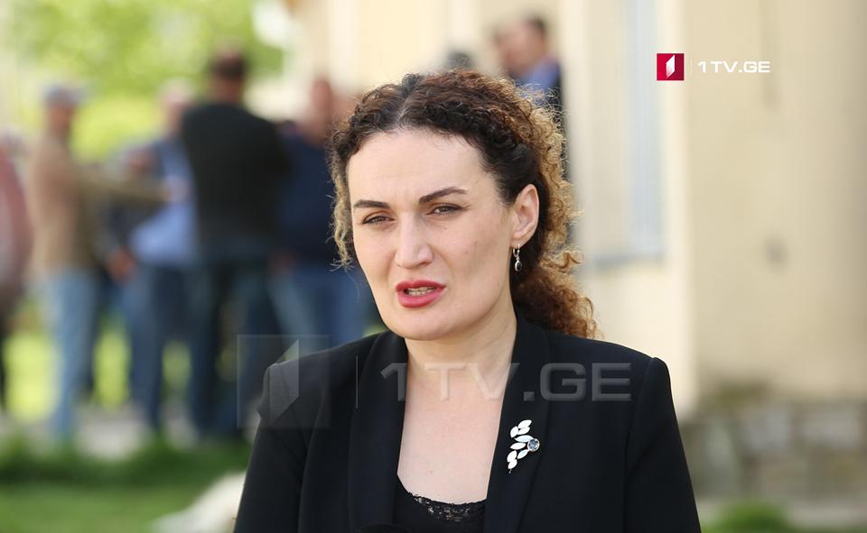 Кетеван Цихелашвили - Решение, принятое в Совете Европы, является гарантией того, что совместными усилиями мы будем успешными в мирной политике