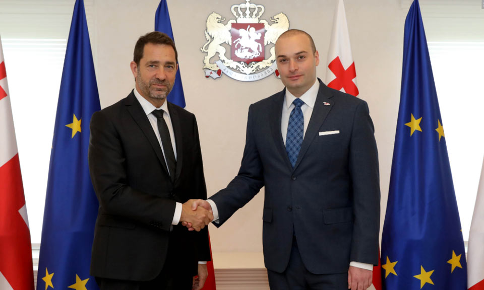 Мамука Бахтадзе принял министра внутренних дел Франции