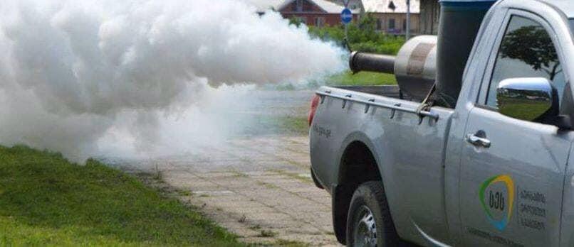 ფოთში კოღოს საწინააღმდეგო შეწამვლის სამუშაოები მიმდინარეობს