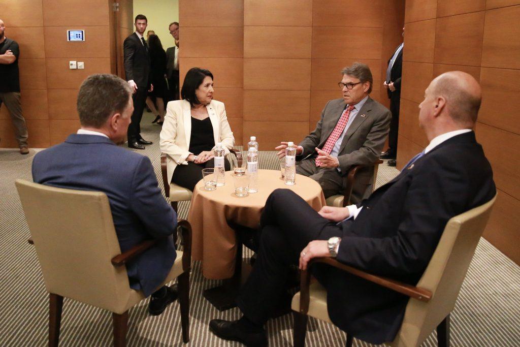В Киеве состоялась встреча Саломе Зурабишвили и секретаря США по энергетике