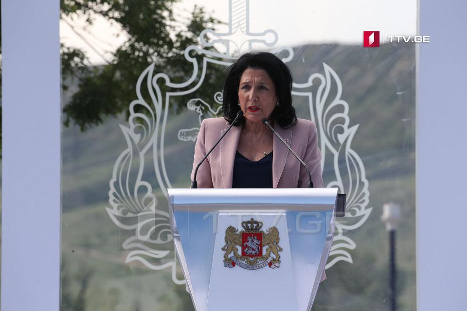 Саломе Зурабишвили - Я приветствую процесс реформирования формирования современного грузинского полиции