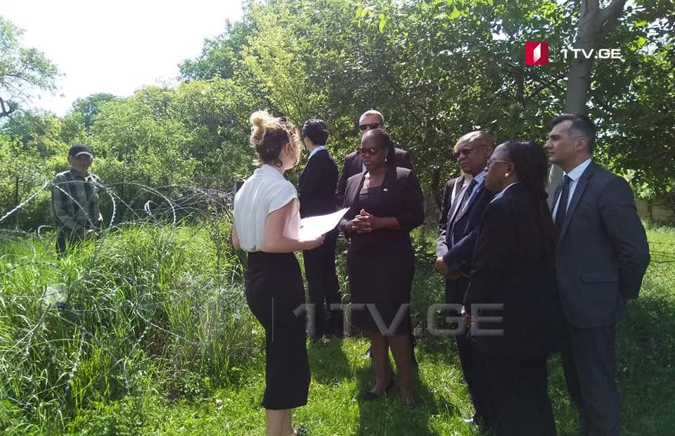 Министр иностранных дел Ботсваны посетила село Хурвалети