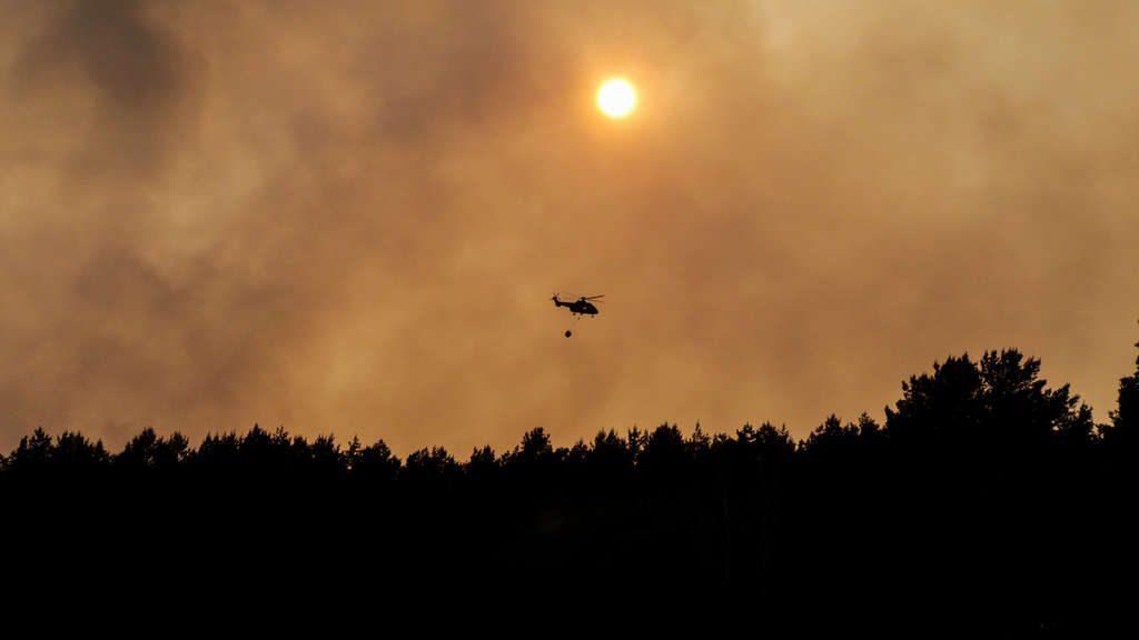 Almaniyada, meşədə yanğın nəticəsində 600 hektardan artıq sahə məhv oldu