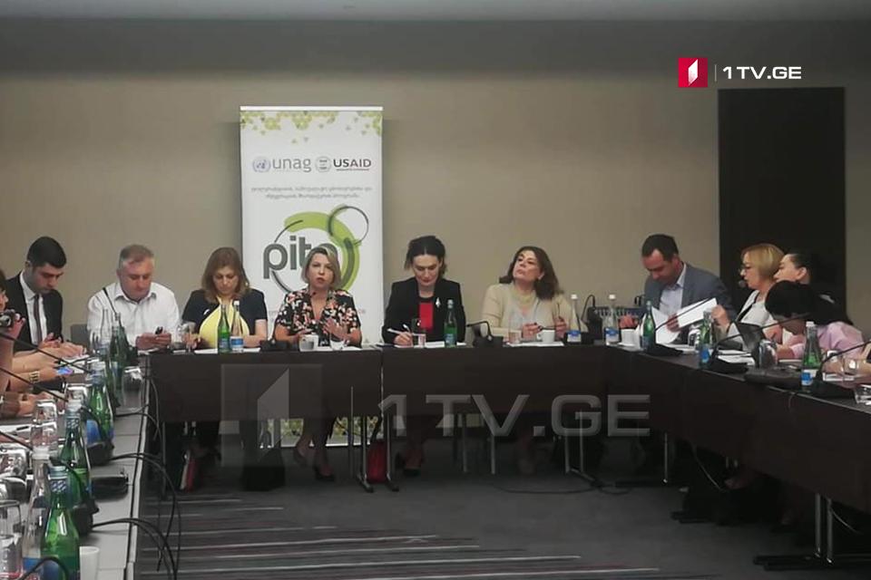 Нино Ломджария – Участие этнических меньшинств в процессе принятия решений в Грузии является довольно низким и проблематичным