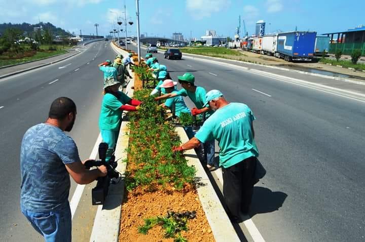 მილიონი ყვავილი ბათუმისთვის - ბათუმში ერთწლიანი მცენარეების დარგვა დაიწყო