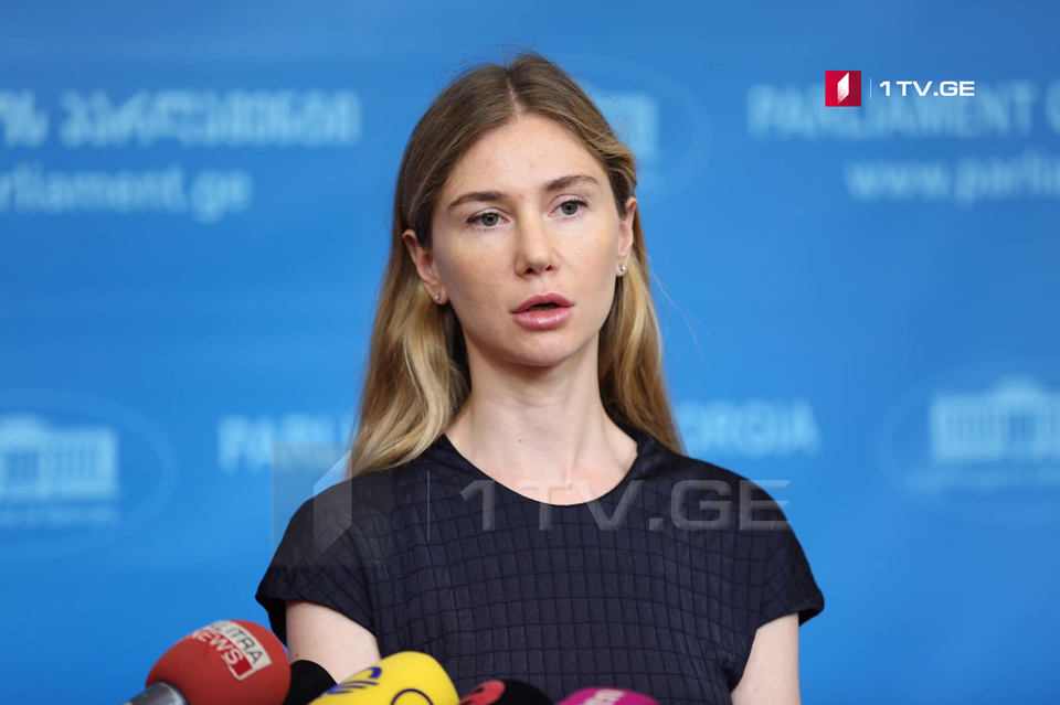 Tina Bokuchava: Prior to establishment of Constitutional Commission, we are not going to take part in any negotiation hosted by Georgian Dream