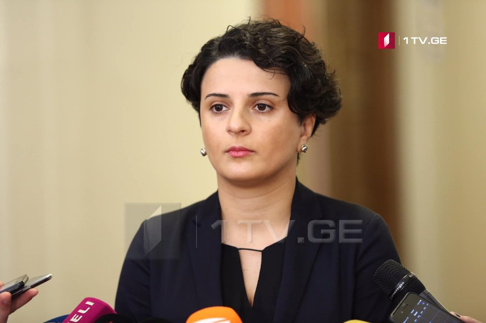 Natia Mezvrishvili: The ministry's response to those who raise a hand against a police officer will be strict