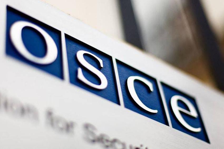 Парламентская ассамблея ОБСЕ приняла подготовленный Грузией проект резолюции