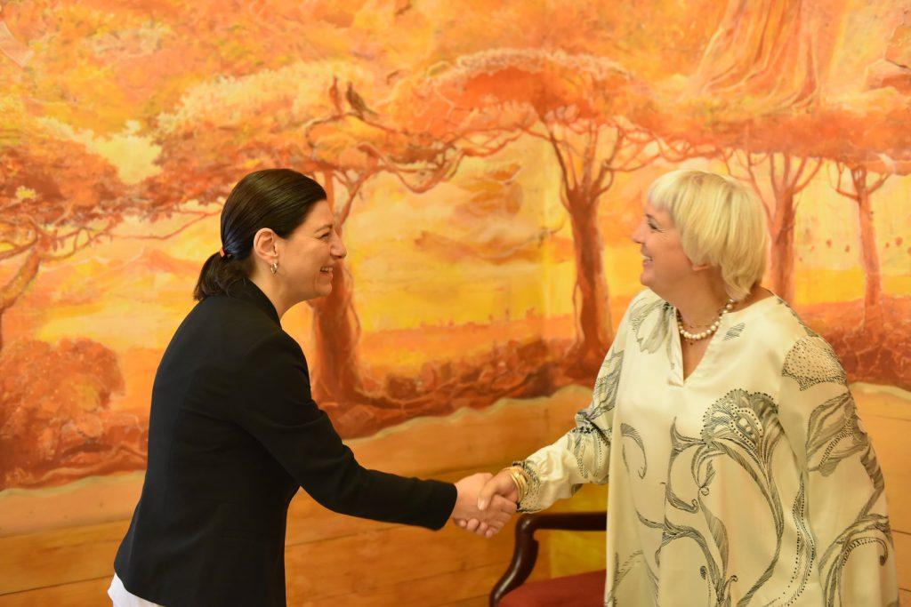 სოფო ქაცარავა გერმანიის ბუნდესტაგის ვიცე-პრეზიდენტს, კლაუდია როთს შეხვდა