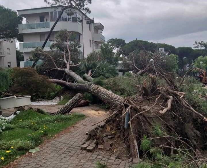 Իտալիայի Ռոմանյա նահանգում փոթորիկը արմատախիլ է արել ծառները և վնասել ավտոմեքենաները