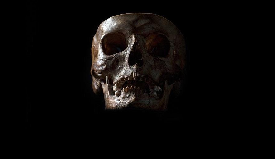 თანამედროვე ადამიანთა დნმ-ში ადამიანის ორი უცნობი, გადაშენებული სახეობის კვალი აღმოაჩინეს