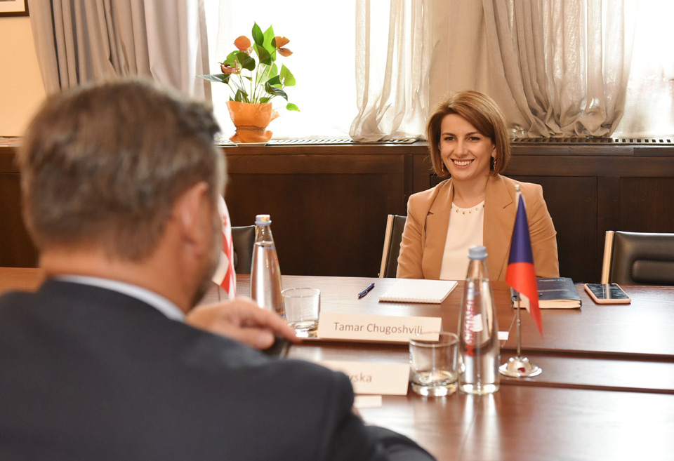 Tamar Chugoshvili met with the newly appointed Ambassador of the Czech Republic