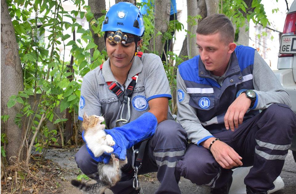Спасатели вытащили из 10-метровой ямы котенка (фото)
