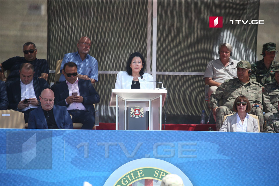Salome Zurabishvili - Path to NATO is a path to global peace and stability of the region