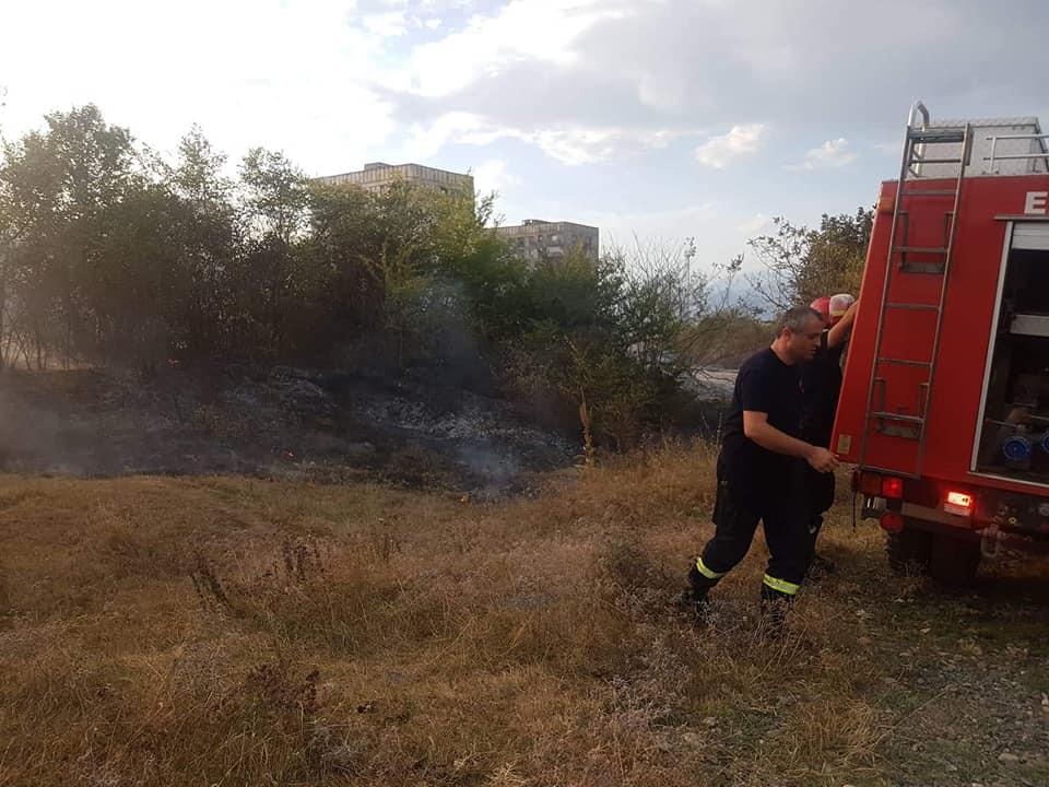 თელავში ხმელ ბალახსა და ხეებს ცეცხლი გაუჩნდა