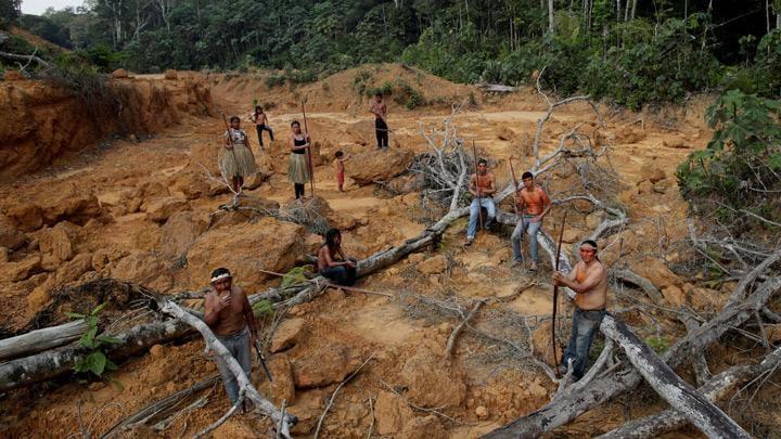 Проживающие в сердце тропического леса Амазонии представители племени мура заявляют, что не покинут свою землю (фото)