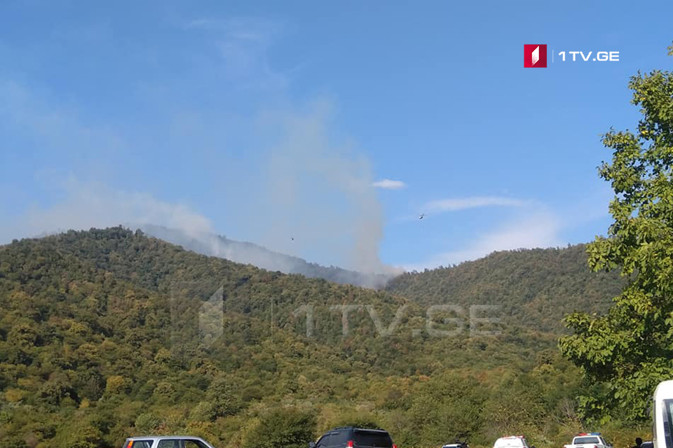 Three helicopters involved in fire-extinguishing works near Akhalsopeli