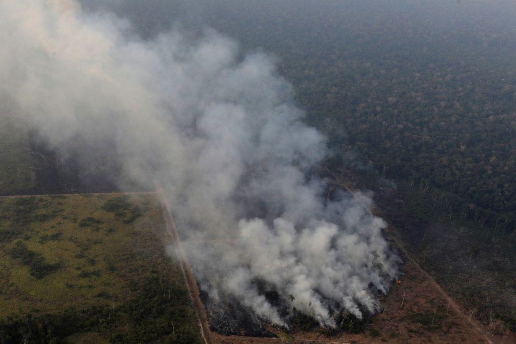 """დონალდ ტუსკი - ბრაზილიასთან თავისუფალი ვაჭრობის შეთანხმების რატიფიკაცია რთული წარმოსადგენია, როდესაც მისი ხელისუფლება """"დედამიწის ფილტვებს"""" ცეცხლს ანადგურებინებს"""