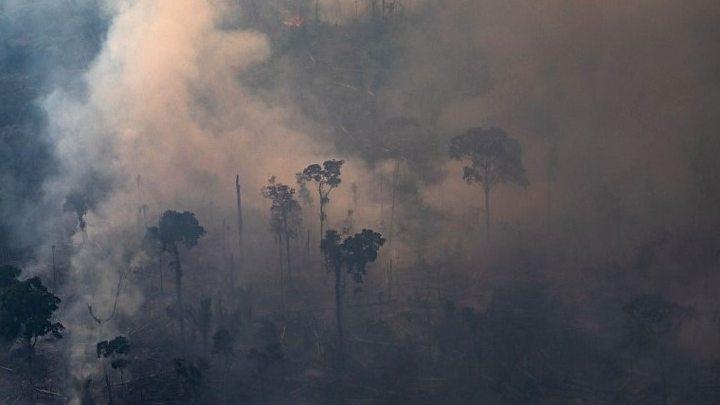 Բրազիլիայի կառավարությունը հրաժարվել է Մեծ յոթնյակի կողմից հատկացված ֆինանսական օգնությունից