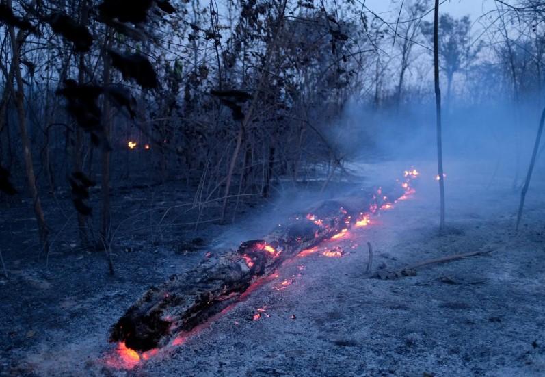 ბრაზილიელი მეტეოროლოგები - წვიმა ამაზონის ტყეში ხანძრის ჩაქრობას რამდენიმე კვირა ვერ შეძლებს