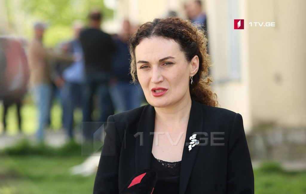 Ketevan Tsikhelashvili – We remain committed to holding of constructive meetings