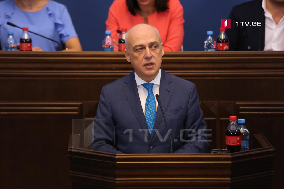 Foreign Minister – Illegal borderization in Gugutiantkari and developments at Chorchana show that actual annexation has not ceased