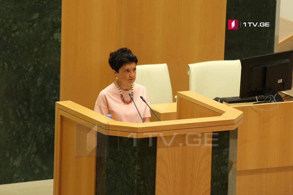 Тея Цулукиани - Министерство юстиции продолжит работу, чтобы сохранить режим безвизового сообщения со странами ЕС