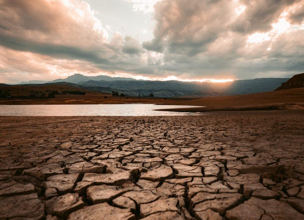 2019 წლის ზაფხული ჩრდილოეთ ნახევარსფეროში ყველაზე ცხელი იყო აღრიცხულთა შორის