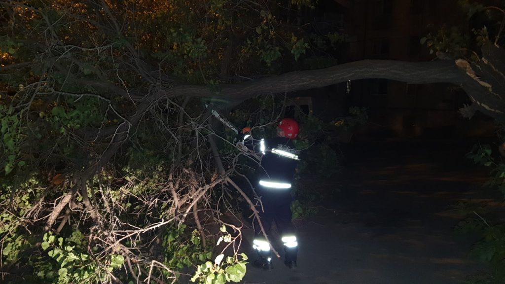 Արտակարգ իրավիճակների ծառայություն մտել է, Թբիլիսիում ուժեղ քամու պատճառով 30, իսկ Բաթումիում տեղումների պատճառով 20 ահազանգ