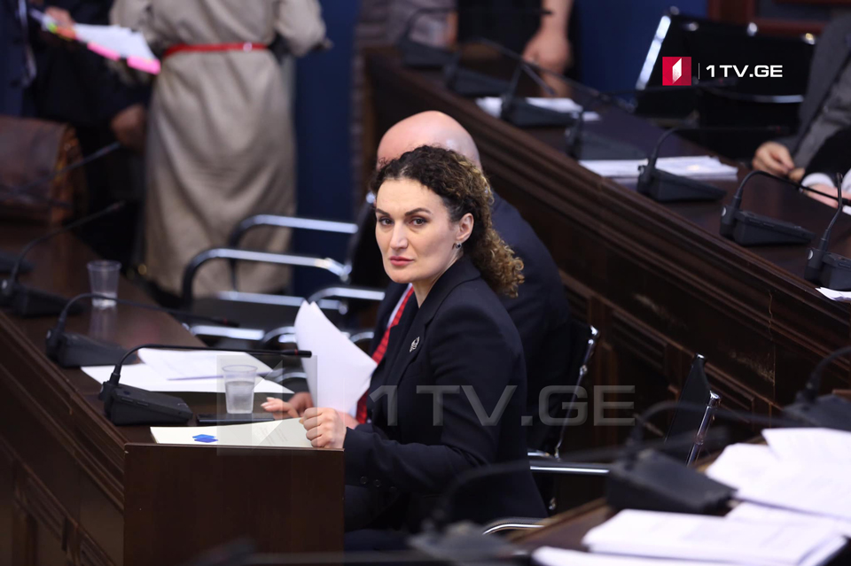 Parlamentdə bu gün Ketevan Tsixelaşvilini dinləyəcəklər