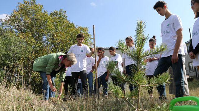 დღეს ხის დარგვის საერთაშორისო დღეა