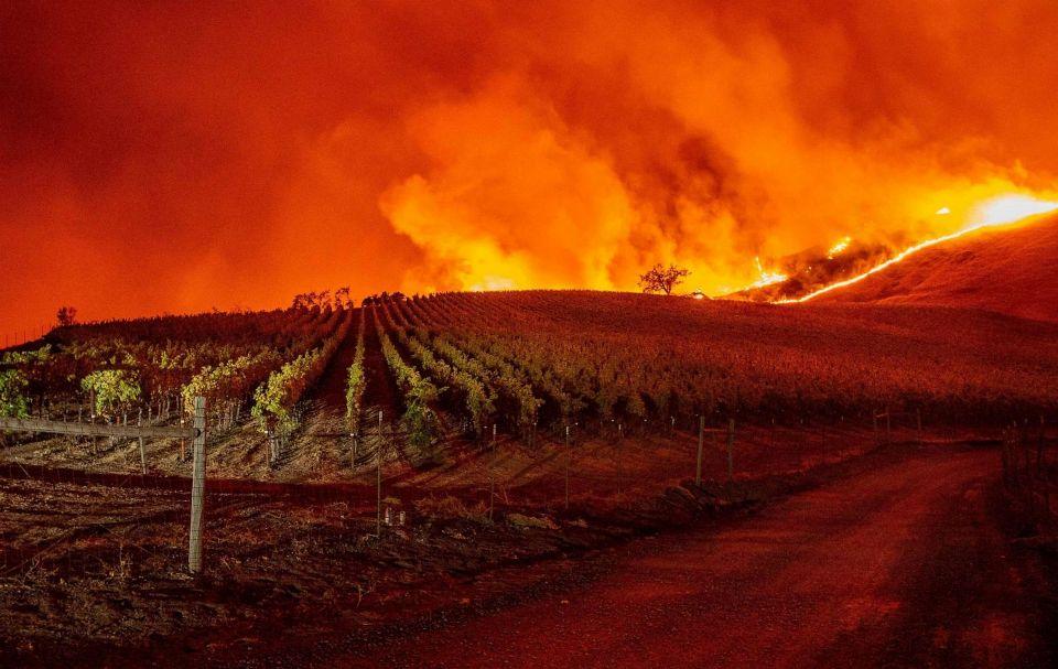 კალიფორნიაში ტყის ხანძრის გამო 40 ათასამდე ადამიანის ევაკუაციის განკარგულება გასცეს
