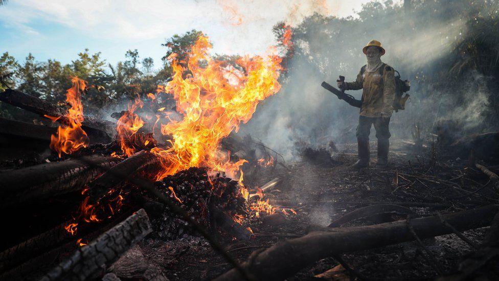 ბრაზილიაში პანტანალის ნაკრძალი იწვის