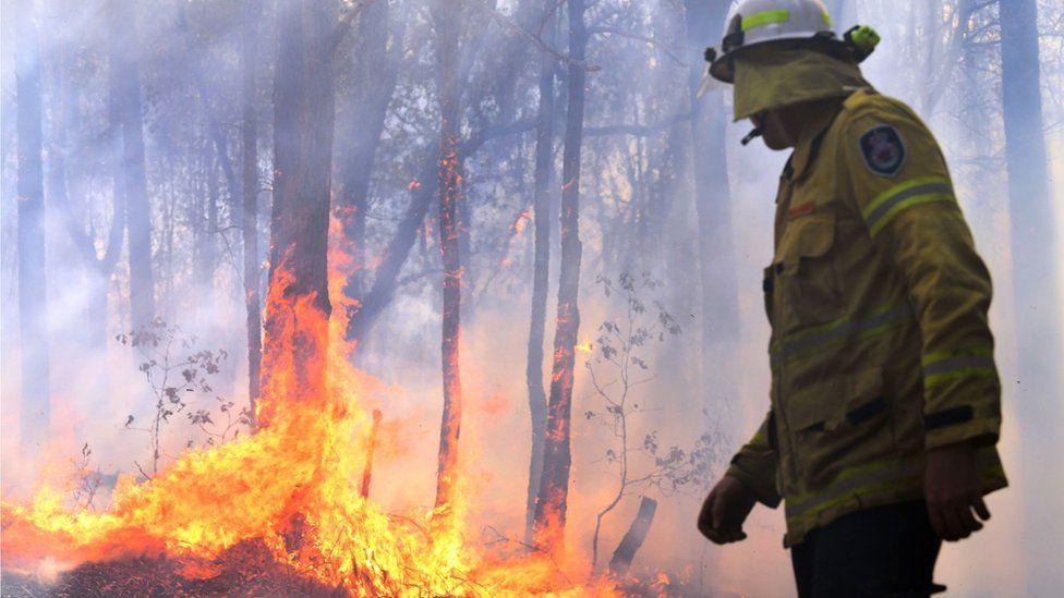ავსტრალიაში ტყის ხანძარმა რეკორდულ მასშტაბს მიაღწია