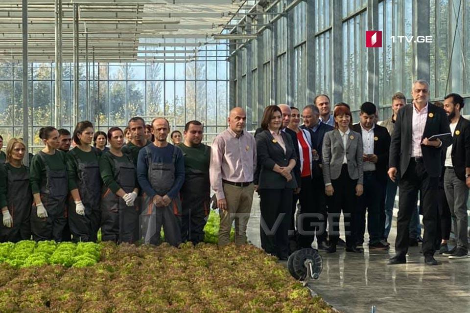 Mamuka Khazaradze introduces 12 new members of Lelo public movement